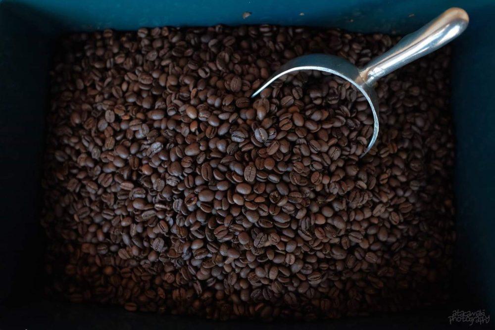 cameocoffeecompany-3